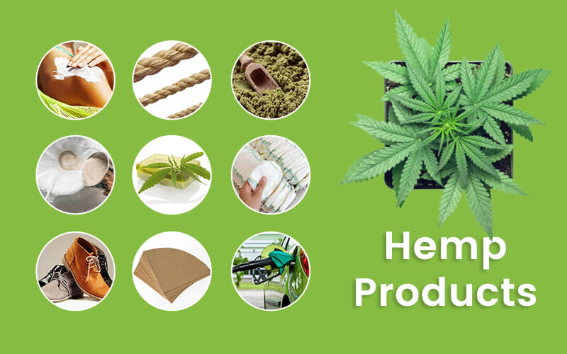 Top Products Which Can Be Produced From Hemp